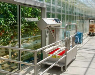 Hygiëne in de glastuinbouw